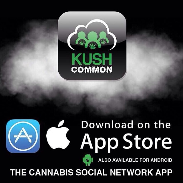 Announcing the much awaited iPhone and iPad KUSHCommon App. Now available in the App Store!