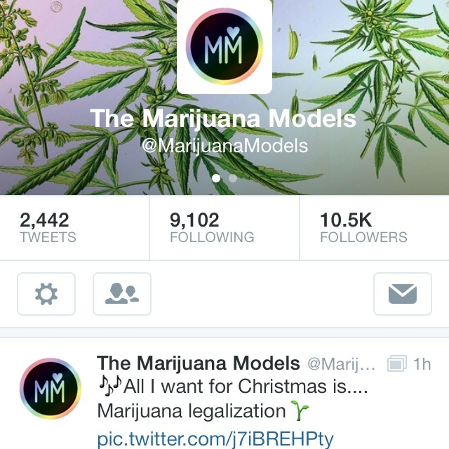 If you're a fan of our IG, add us on twitter! ️ @MarijuanaModels [photos, rants, & silliness galore] 😙