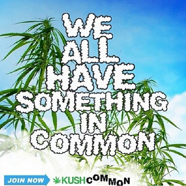 Looking for a place to be yourself? Available now online at KUSHCommon.com and in the App Store for Android and Apple devices! Artwork by @stonerdays