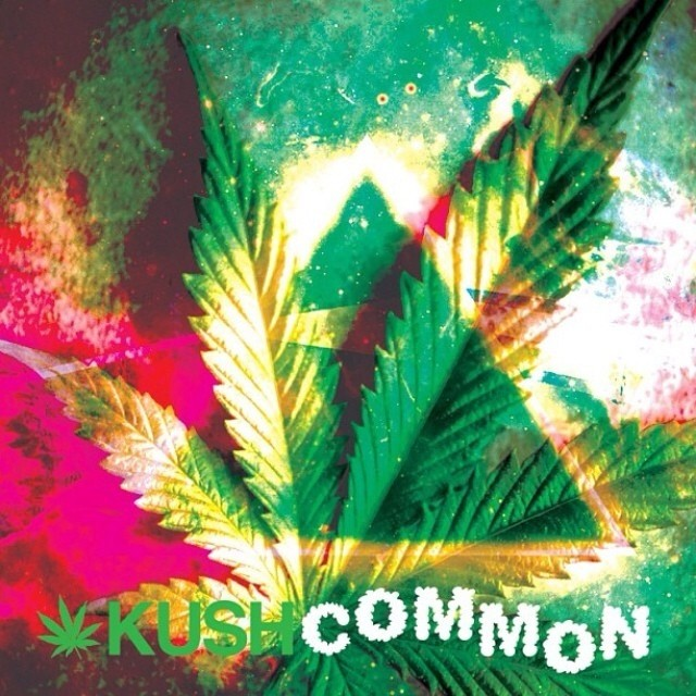 KUSHCommon.com >