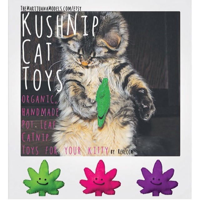 😬😬😬 Available in our shop for the stoner kitties of the world