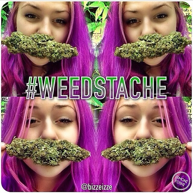 @bizzeizze x @moniyoshi x @weedstache