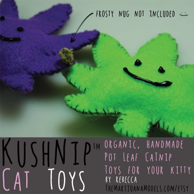I love seeing pics of your cats playing with their new KUSHnip toys! 😙