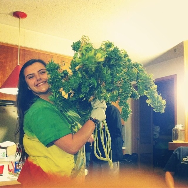 Best Bouquet Ever. @krystalalea