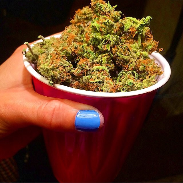 @kirstenbadass I'd rather have a solo cup full of weed