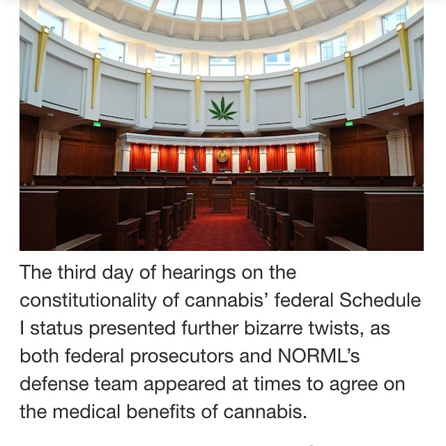 "Thank you @relegalization! Did you know there are federal hearings happening RIGHT NOW to declassify marijuana as a Schedule 1 drug (the gov currently views it as having zero medicinal benefits)! We haven't seen many people talking about this and it is EXTREMELY important to the cannabis movement! Please spread the word so people know @natlnorml is fighting hard to show that ""cannabis prohibition is unconstitutional and based on inaccurate information."" TOGETHER WE CAN END PROHIBITION. Additional information found on ladybud.com & theleafonline.com"
