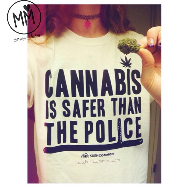 "️Ft the awesome @positiveginger In addition, Cannabis is safer than the government. Cannabis is safer than most of the food at your grocery store. Cannabis is safer than the pills your doctor prescribes. Cannabis is safer than the booze you can get at the store. Cannabis is safer than synthetic marijuana aka ""spice."" ️️️What else?️️️ ...everything? ️T-shirt & choker available at ️shop.kushcommon.com"
