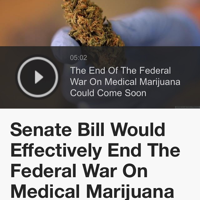 """""""This bill that we are introducing seeks to right decades of wrong,"""" Booker said Tuesday. """"Doctors and patients deserve federal laws that are fair and compassionate, and states should be able to set their own medical marijuana policies without federal interference. I am thankful to Senators Gillibrand and Paul as well as the Drug Policy Alliance for their hard work on this common-sense bill to make medical marijuana accessible to the millions of Americans who could benefit from it."""" """"Today,"""" Booker added, """"we join together to say: Enough is enough."""" The article quoted is here: http://m.huffpost.com/us/entry/6836482"""