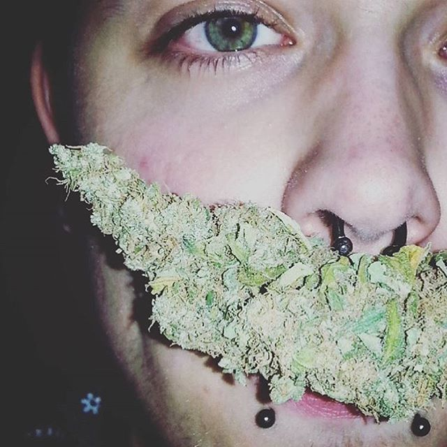 Sometimes dude's eyes match the nug too🌲 @kevinxkhalifaa @kevinxkhalifaa @kevinxkhalifaa