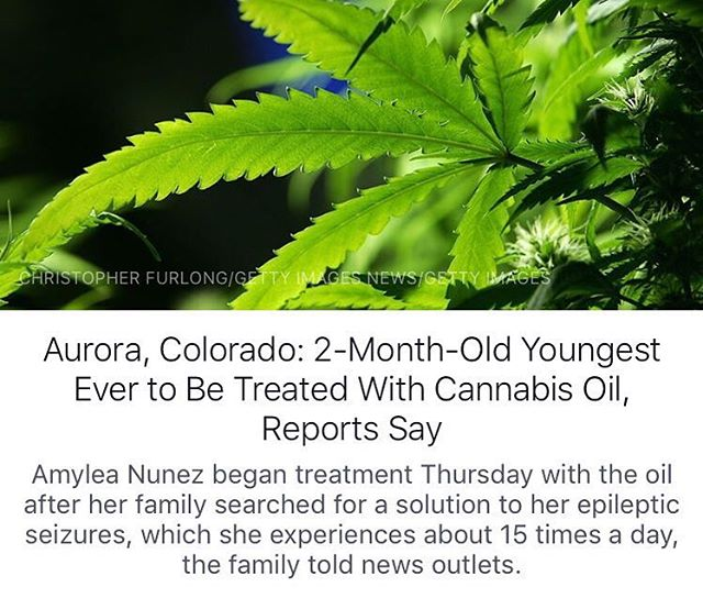Hoping more & more people get access to this plant that can treat so much and so many Many have come forward saying Cannabis oil cured their cancer, dramatically reduced seizures, or helped countless other ailments/diseases/mental illnesses/etc. It's sick that so many continue to suffer while the government pretends this plant is a drug.
