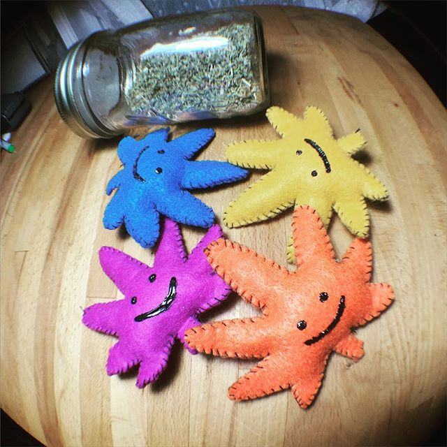 One lucky kitty got all these KUSHnips! Made with organic catnip, each one is hand stitched by & ️ Checkout all the colors we have available at www.shop.kushcommon.com📬 Link also in our bio!